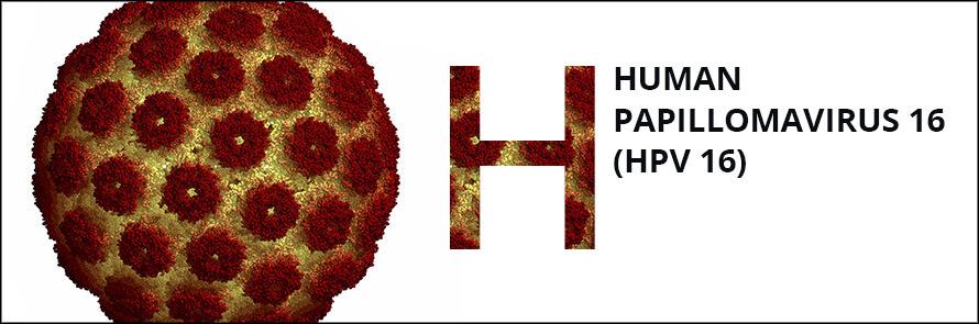 papilloma vírus pcr